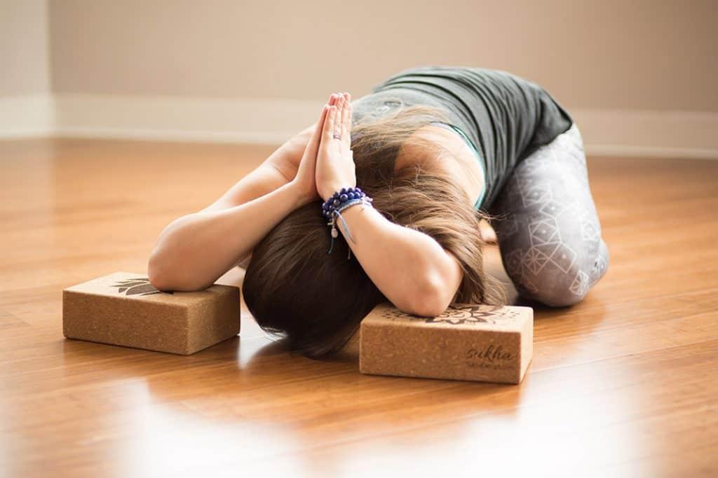 Tìm Hiểu Về Các Trường Phái Tập Yoga Phổ Biến Trên Thế Giới 13